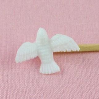 Colombe tourterelle oiseau miniature
