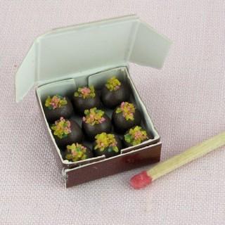 Boite de truffes chocolat miniature maison poupée,
