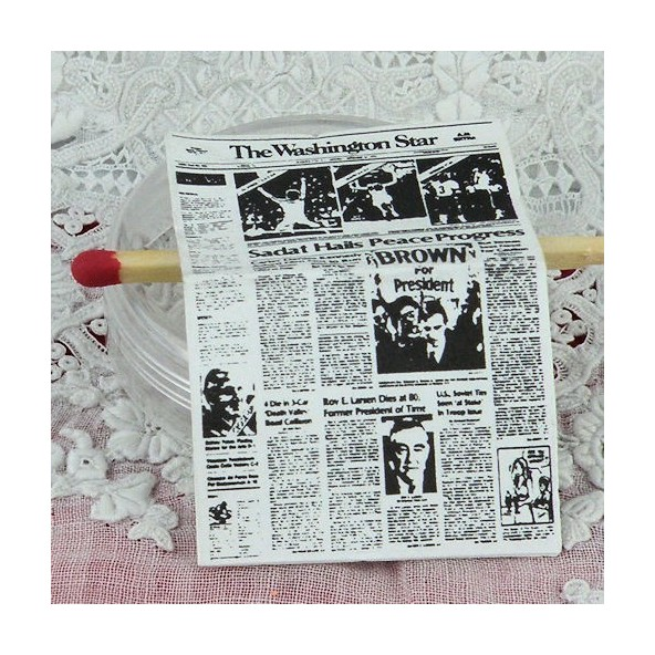 Journal miniature maison poup e washington star - Journal decoration maison ...