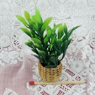 Planta verde miniatura casa muñeca 7 cm,