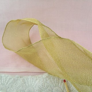 Ribbon is a very fine mesh metallic sheer with a firm texture