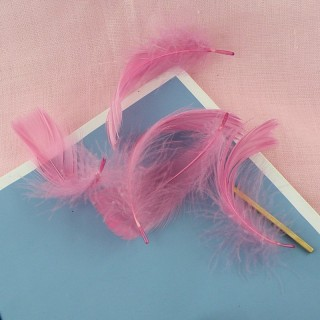 Dyed Feathers for decoration, jewelry making