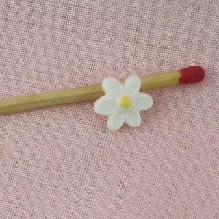 Boutons fleur marguerite 1 cm, 10 mm.