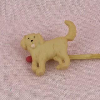 Labrador Hund Knopf, retriver.