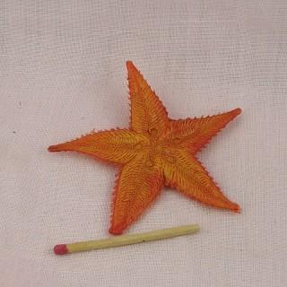 Estrella de mar miniatura cocina muñeca 9 cm.