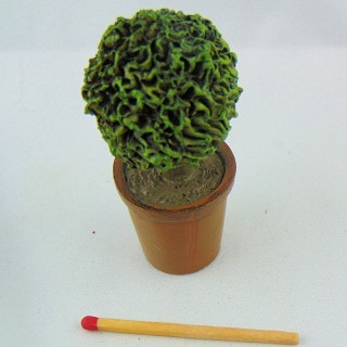 Formbaumbaum Miniaturpuppenhaus 6 cm,