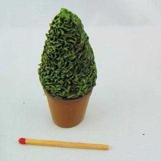Arbre topiaire miniature maison poupée 7 cm,