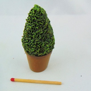 Miniature topiery tree for doll house