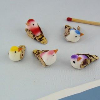 Perno tórtola pájaro miniatura