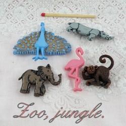 Zoológico y selva