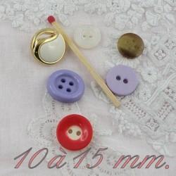 Medium size 10  to 15 mm