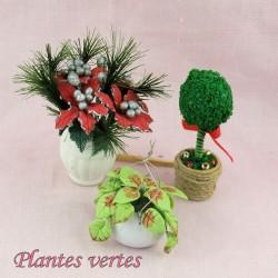 Kleine Pflanzen